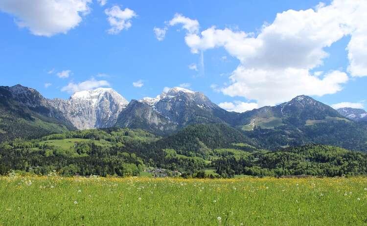 Frühling in Oberschönau