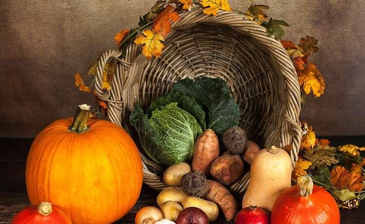 Pumpkin 1768857 1920